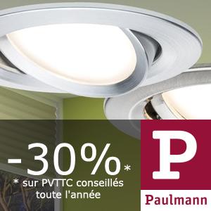 Catalogue Paulmann LuminaireTout Le Spotamp; Lampe W29IDEHY