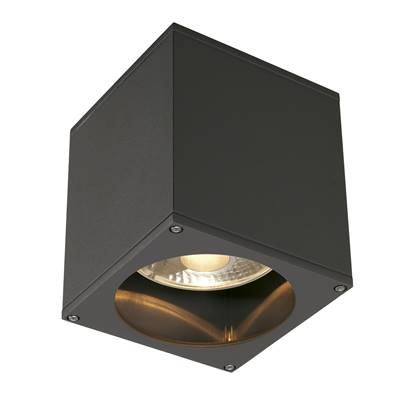BIG THEO OUT plafonnier, carré, anthracite, ES111, max. 75W SLV