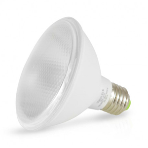 Ampoule LED PAR30 12 W E27 3000K IP65